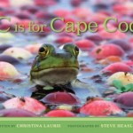 c_is_for_cape_cod_cover_web